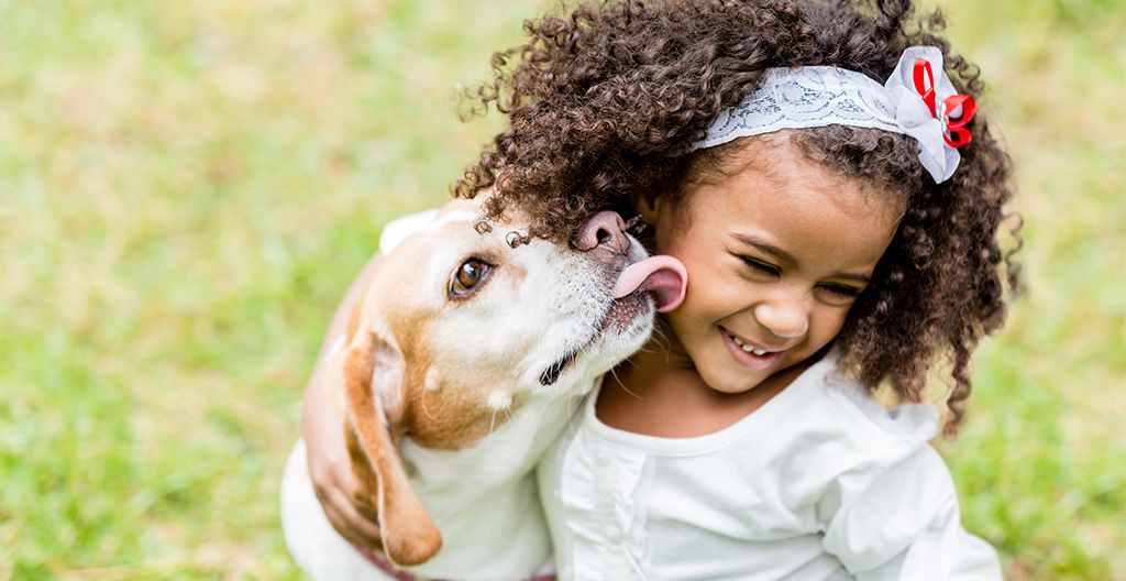 dogs-boost-the-immune-system