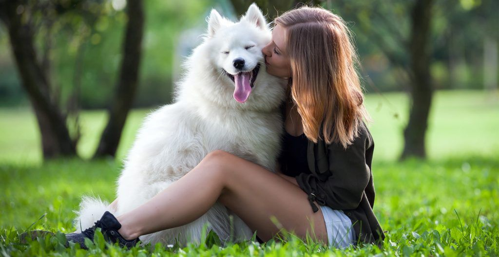 dogs-make-us-more-affectionate