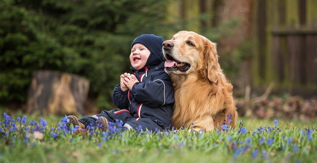 dogs-make-us-more-compassionate