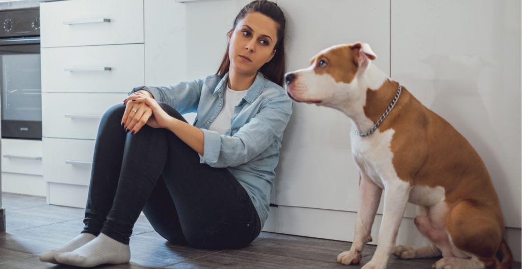 dog-with-bad-behavior