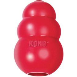 KONG-classic-dog-toy