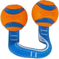 chuckit-ultra-duo-tug-tough-dog-toy