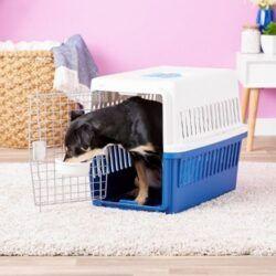IRIS-deluxe-travel-dog-kennel