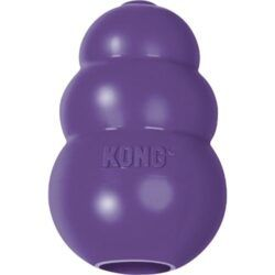 KONG-senior-dog-toy