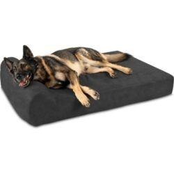 big-barker-7inch-headrest-orthopedic-pillow-dog-bed-with-removable-cover