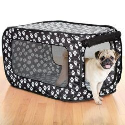 etna-pop-open-single-door-collapsible-soft-sided-dog-crate