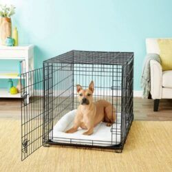 frisco-fold-carry-double-door-collapsible-wire-dog-crate