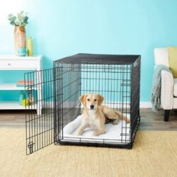 frisco-heavy-duty-fold-carry-double-door-collapsible-wire-dog-crate