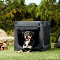 frisco-indoor-outdoor-3-door-collapsible-soft-sided-dog-small-pet-crate