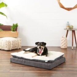 frisco-plush-orthopedic-pillowtop-dog-bed-with-removable-cover