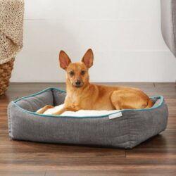 frisco-sherpa-orthopedic-bolster-dog-bed