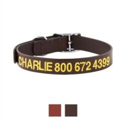gotags-personalized-leather-dog-collar