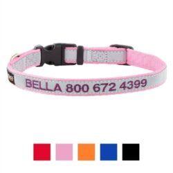 gotags-personalized-reflective-nylon-dog-collar