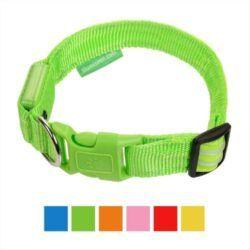 illumiseen-led-usb-rechargeable-nylon-dog-collar
