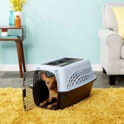 petmate-two-door-top-load-dog-kennel