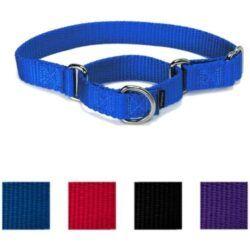 petsafe-nylon-martingale-dog-collar