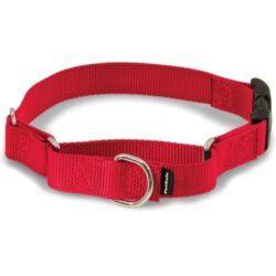 petsafe-quick-snap-buckle-nylon-martingale-dog-collar