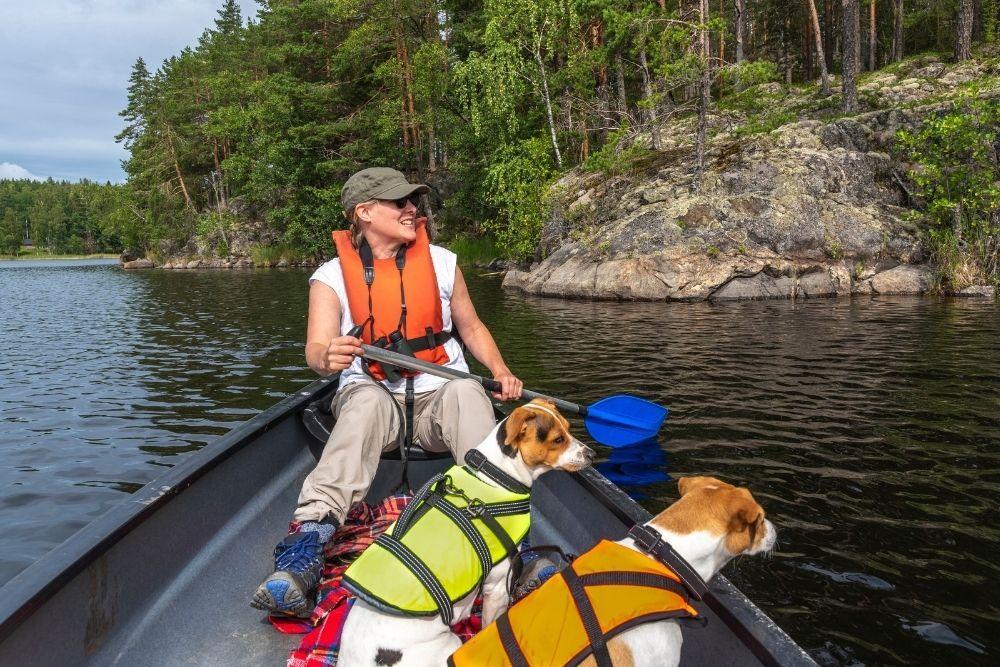 dog-outdoor-fun-canoeing