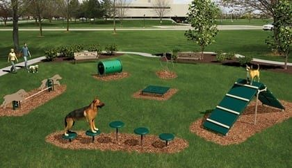 5. Obstacle Course Dog Run