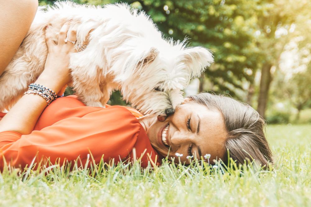 dog-favors-a-woman