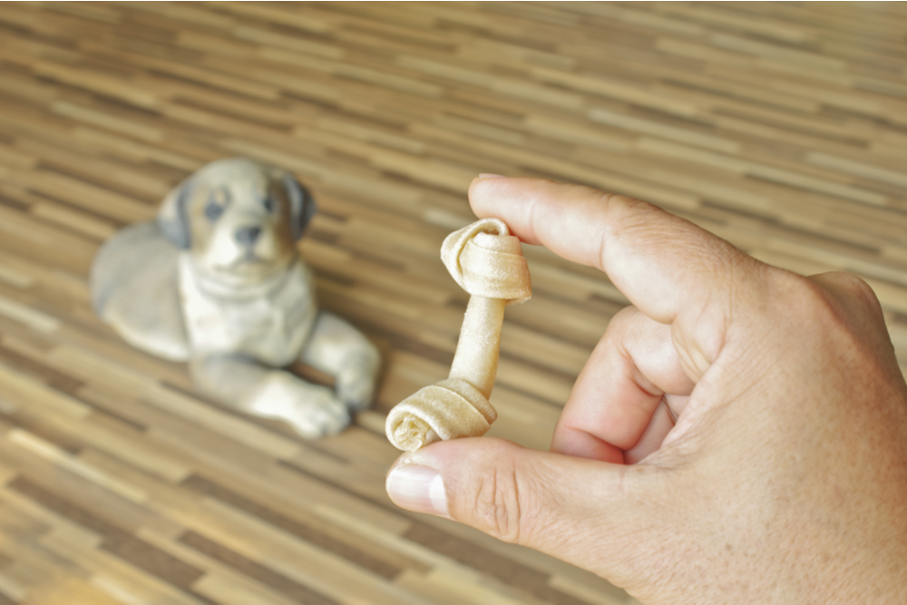 giving-dog-a-chew-toy