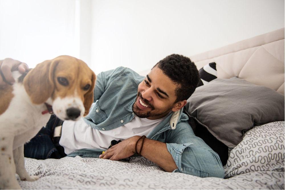 reasons-dog-wont-cuddle